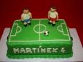 fotbalmartin2
